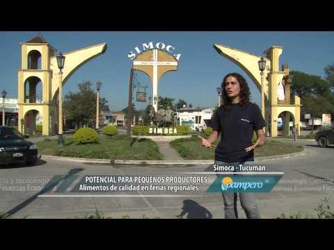 PAMPERO TV-23 DE