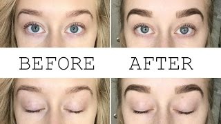 DIY Brow & Eyelash Tint | Dye Your Eyebrows & Lashes At Home!
