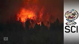 The Mega-fire Danger Coming To Your Home Soon