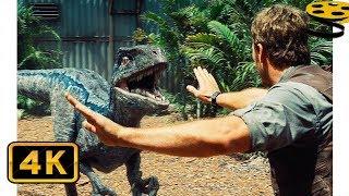 Оуэн Грэди дрессирует Рапторов. Спасение работника Парка | Мир Юрского периода | 4K ULTRA HD