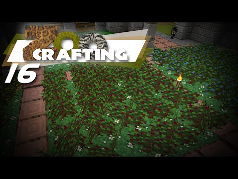 Wyntr Loves| Zoo Crafting |16| Present For Huck
