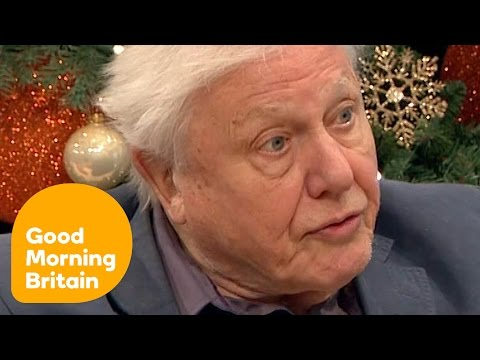 David Attenborough Talks About His Legendary Career | Good Morning Britain
