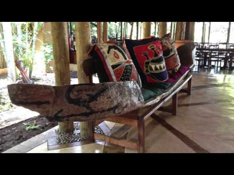 Africa: Chobe, Victoria Falls, Kruger