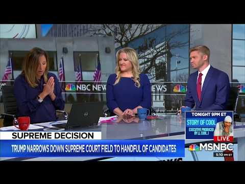 Jen Kerns Appears on MSNBC Live With Ayman Mohyeldin