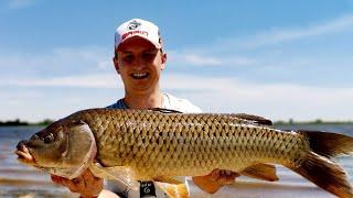 УХХХ КАК ЗАГИБАЕТ КРОКОДИЛА. Рыбалка на жмых. Ловля сазана на Дону. Рыбалка 2020.