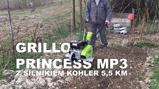 Profesjonalna i bardzo wydajna glebogryzarka samojezdna Grillo Princess MP3 / silnik Kohler 5,5 KM