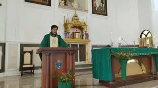 """""""Hidup tidak selamanya manis"""": Homili RD. Oktovianus Tandilolo pada Minggu Biasa XIV"""