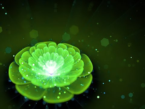 Sleep Meditation Music for Heart Chakra || anahata || Healing Music