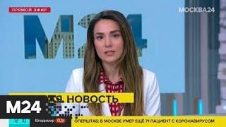 Правительство выделит 1,6 млрд рублей на возврат налога самозанятым - Москва 24