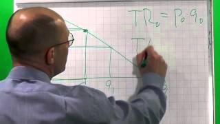 Лекция 35: Концепция эластичности. Эластичность линейной функции спроса