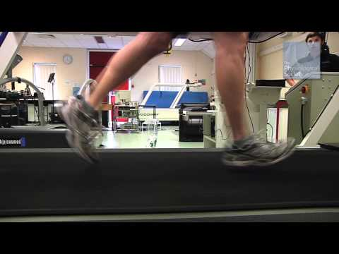 Respiration In Exercise