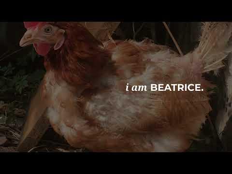 Beatrice needs your help