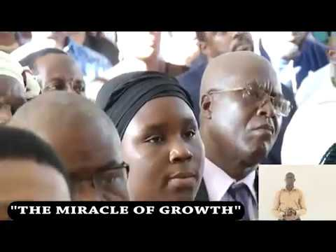 THE MIRACLE OF GROWTH