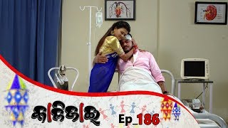 Kalijai | Full Ep 186 | 21st Aug 2019 | Odia Serial - TarangTV