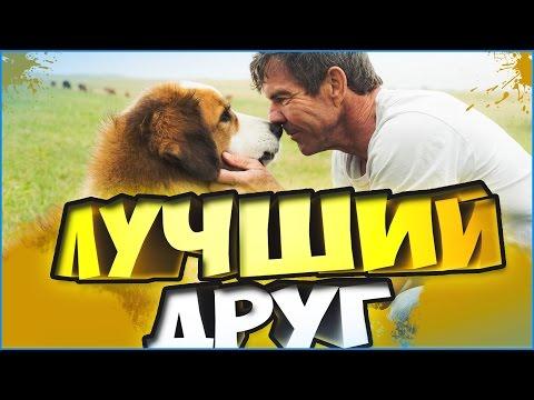 Собачья жизнь/Цель и жизнь собаки(A Dogs Purpose) 2017 - обзор фильма и мое мнение