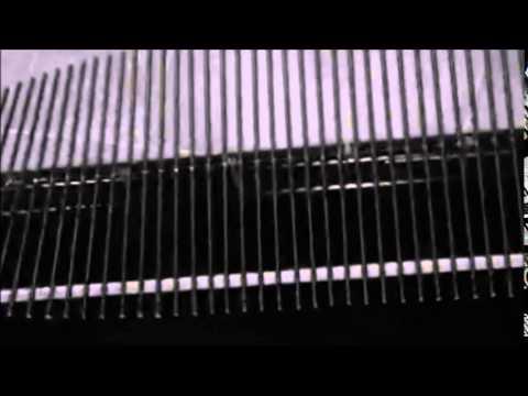 Transverse Wave Action Video
