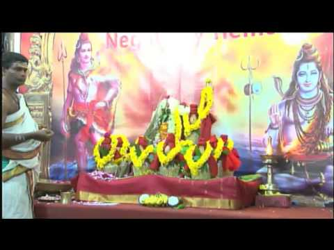 Goddess Varahi | Benefits of worshipping Goddess Varahi – AstroVed Pedia