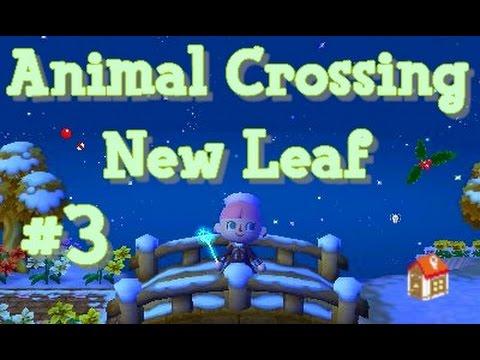 Animal crossing new leaf 3 solstice d 39 hiver et visite de - Coupe animal crossing new leaf ...