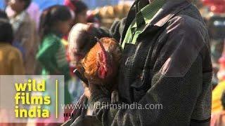 Man waiting for customer to barter his item - Jonbeel Mela, Assam