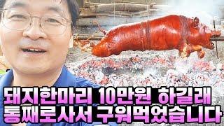 Eng)(혐오주의) 돼지 한마리 10만원 하길래 한마리…
