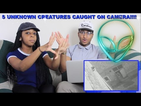 Couple Reacts : 5 Unknown Creatures Caught On Camera & Spotted In Real Life!!!! Reaction