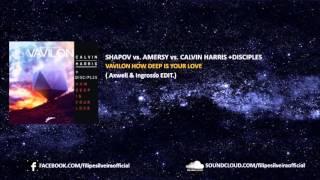 SHAPOV vs. Amersy vs. CALVIN HARRIS +Disciples- Vavilon How Deep Is Your Love Video