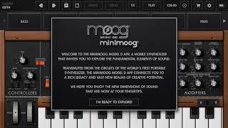 �������� ���� Moog Model D ������