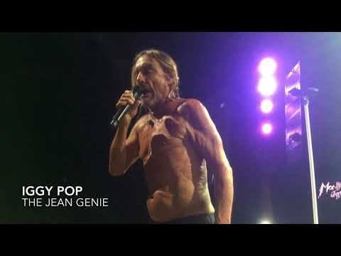 Iggy Pop - The Jean Genie (David Bowie cover)