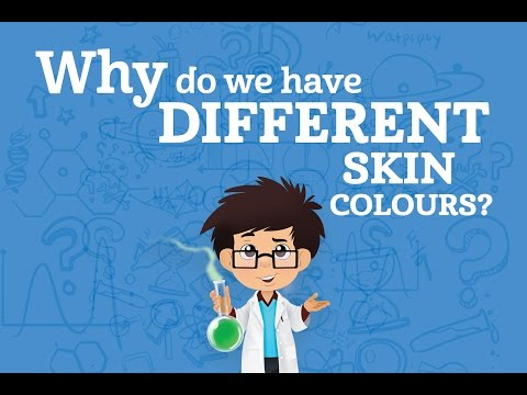 Why do we have different skin colours? | Karim's WOW's (s01e3)