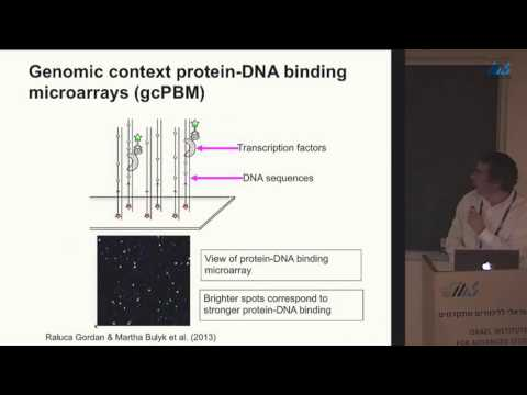 David Lukatsky - Design principles of protein recognition of repetitive genomic DNA sequences