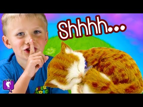 DON'T WAKE THE CAT! Surprise Toys + Laser Kitty with HobbyKidsTV