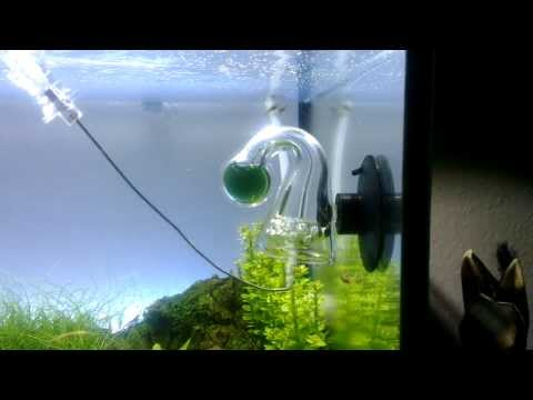 dennerle co2 flipper im 240l aquarium doovi. Black Bedroom Furniture Sets. Home Design Ideas