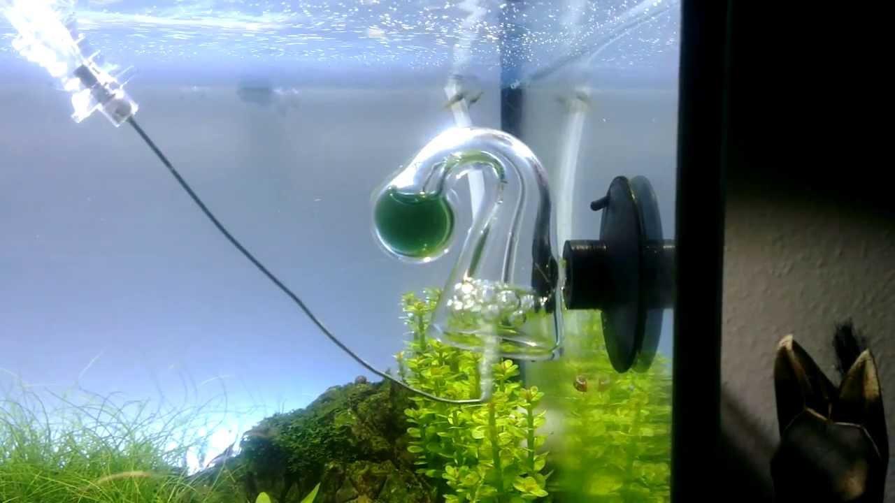 Trick 17 co2 test youtube for Aquarium reinigen