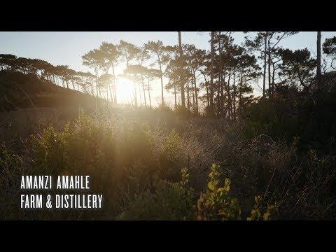 Amanzi Amahle Farm and Distillery