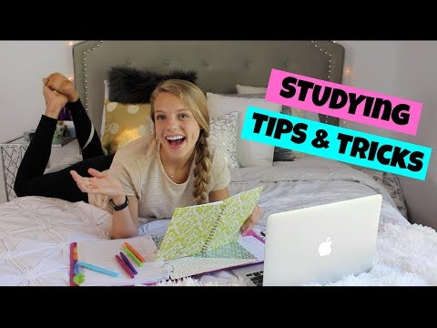 Study Tips + How I Stay organized