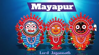 Lord Jagannath Aarti worship Part2