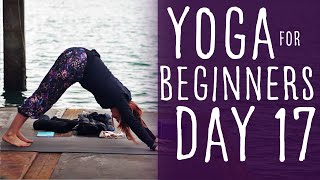 11 Minute Yoga For Beginners 30 Day Challenge Day 17 With Fightmaster Yoga