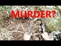 Exploring A Mysterious Creepy Dug Hole In The Woods