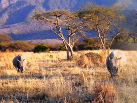 Music: Storms In Africa (Artist Enya original sound)