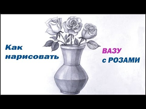 Как правильно нарисовать вазу