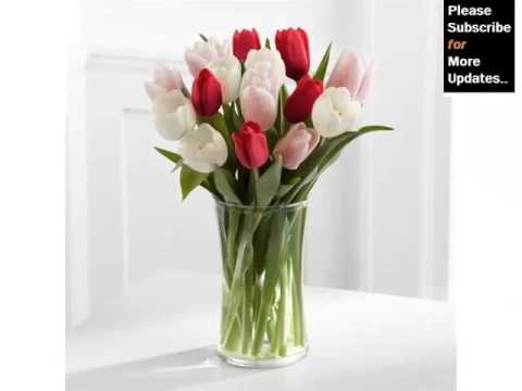 White Tulips In Vase Beautiful Pictures Of White Folwers Phula
