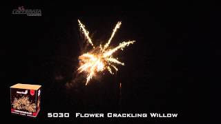 Showtime - 5030 - Flower Crackling Willow