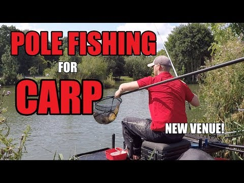 POLE FISHING FOR CARP WITH PELLETS -- NEW VENUE! - ROB WOOTTON