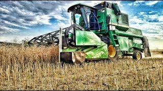 Żniwa Rzepaku 2019 - John Deere 1188 & New Holland T4 // Agro Wschód