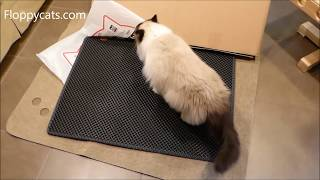 Cat Litter Mat Black Hole: Blackhole Cat Litter Mat Extra Large Unboxing Review Video - Floppycats
