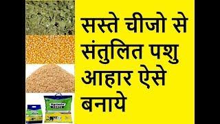 सस्ते चीजो से  संतुलित पशु आहार ऐसे  बनाये/ santulit pashu aahar kaise banaye
