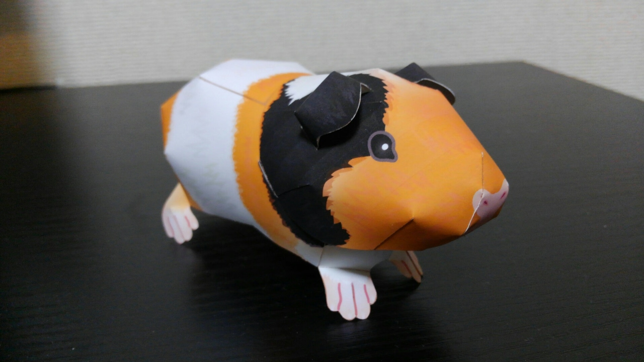 Pin on Guinea Pigs | 720x1280
