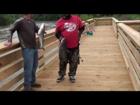 How to catch alot of catfish off the rivers banks.