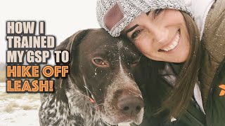 How I trained my GSP to hike off leash