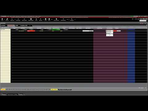 Trader Workstation TWS Basics -  Currency Conversion and Cur